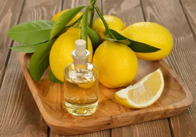 limon-kolonyasi-yapalim